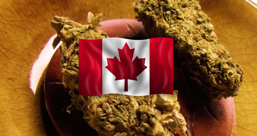 Is Canada Ready for Legal Marijuana?
